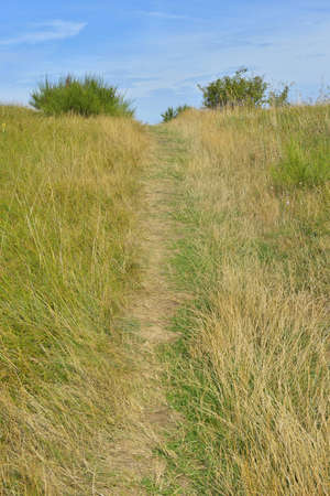 Path to Dornbusch in the Summer, Baltic Island of Hiddensee, Baltic Sea, Western Pomerania, Germany LANG_EVOIMAGES