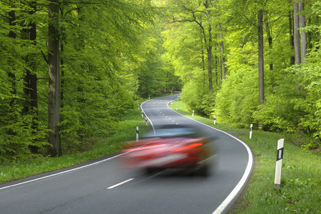 Road Through Forest, Spessart, Bavaria, Germany, Europe LANG_EVOIMAGES