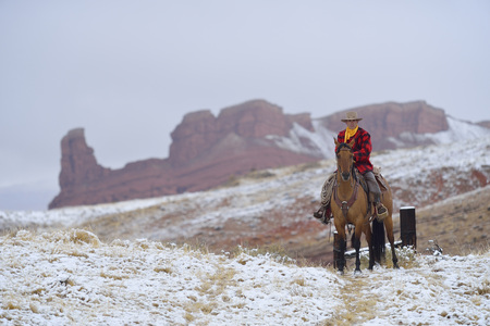 domestication: Cowboy Riding Horse in Snow, Rocky Mountains, Wyoming, USA