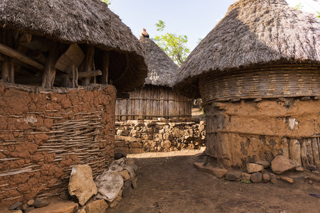 Close-up of huts, Gesergiyo village, near Konso, Ethiopia, Africa
