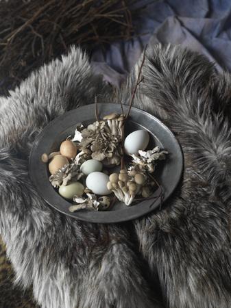 quail: Surtido de huevos y champiñones en la placa en la piel, tiro del estudio LANG_EVOIMAGES