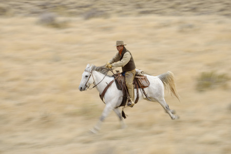 Blurred motion of cowboy on horse galloping in wilderness, Rocky Mountains, Wyoming, USA