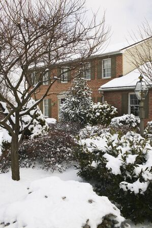 real estate sold: House In Winter