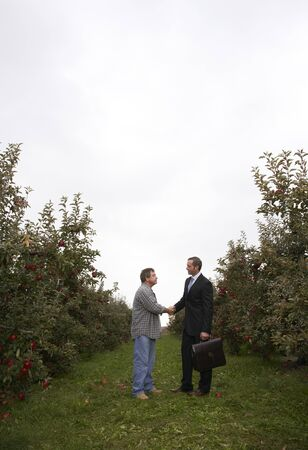 selling service: Businessman and Farmer in Orchard