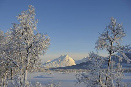 View of Lyngen Alps, Breivikeidet, Troms, Norway