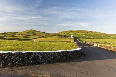Rural Road through Agricultural Landscape with Volcanic Craters, Serra da Ribeirinha, Terceira Island, Azores, Portugal