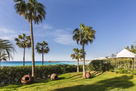Palm trees and planters on lawn in garden at Nissi Beach Resort in Agia Napa, Cyprus