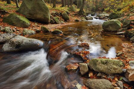 River Ilse with autumn leaves in the Ilse Valley along the Heinrich Heine Trail in Harz National Park, Harz, Germany