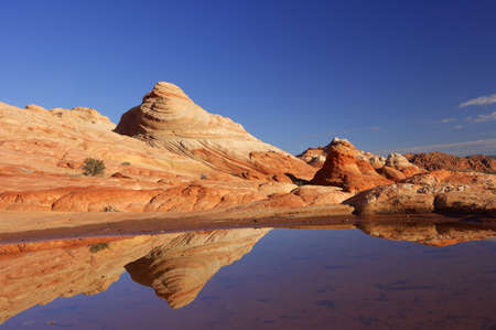 Sandstone Rock Formations reflected in seasonal rainwater pond, Paria Canyon Wilderness in the Vermilion Cliffs in Arizona, USA LANG_EVOIMAGES