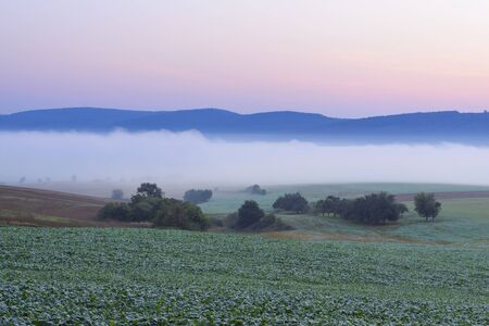 Countryside with morning mist at dawn over fields in Grossheubach in Bavaria, Germany