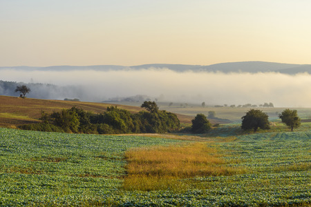 Countryside with morning mist over the fields of Grossheubach with the Spessart hills in the background in Bavaria, Germany LANG_EVOIMAGES