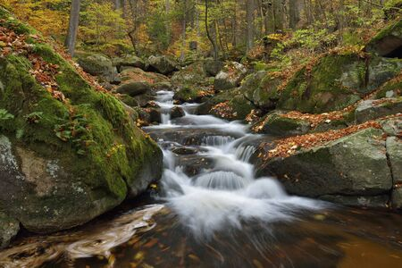Water flowing in the River Ilse with autumn leaves, Ilse Valley along the Heinrich Heine Trail in Harz National Park, Germany LANG_EVOIMAGES