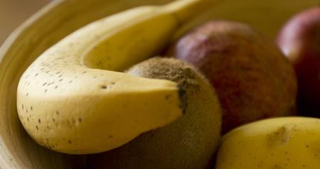 putrefy: fruit