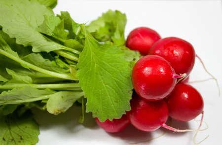 radishes: vegetables radishes