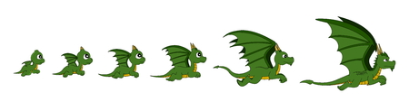 baby dragon: Illustration of a growing dragon through different age stages, from baby dragon to adult, isolated on white background, can be assembled into animation