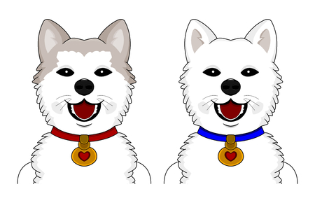 Illustration of two cute akita ken dogs, isolated on a white background