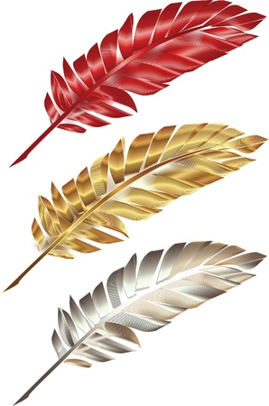 poet: colorful feather Illustration