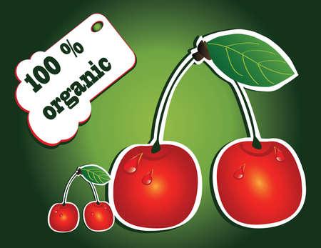 nectarine: organic cherry Illustration