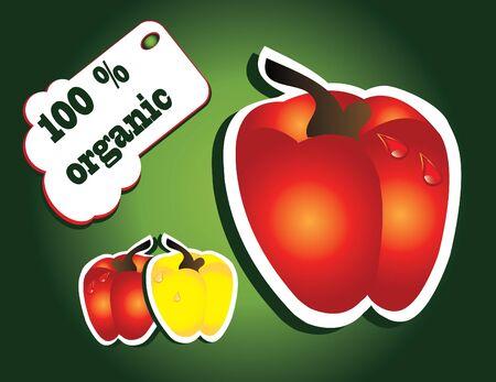 paprika: organic paprika Illustration