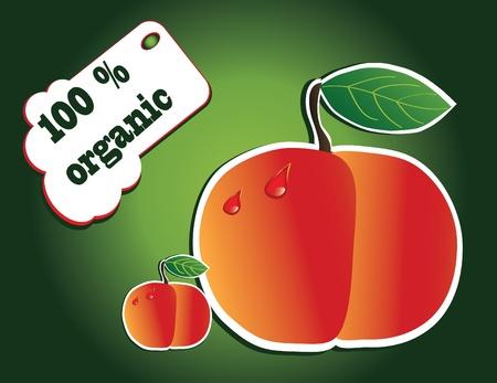 organic peach Stock Vector - 13352004