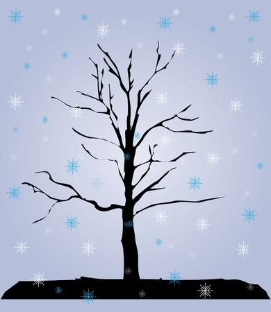 dull: invierno, �rbol,