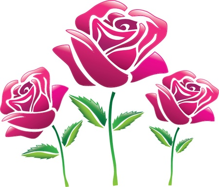 rose stem: pink roses isolated illustration