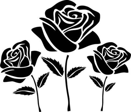 rosas negras: negro rosas