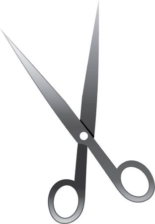 scissors Stock Vector - 21060392
