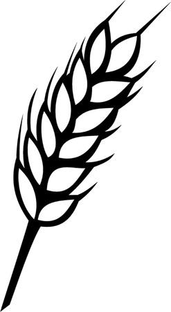 outline drawing: spiga di grano contorno Vettoriali