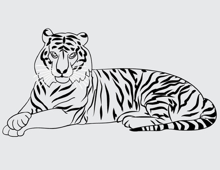 eyes wide open: tiger lies outline Illustration
