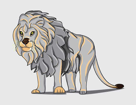 eyes wide open: white lion standing