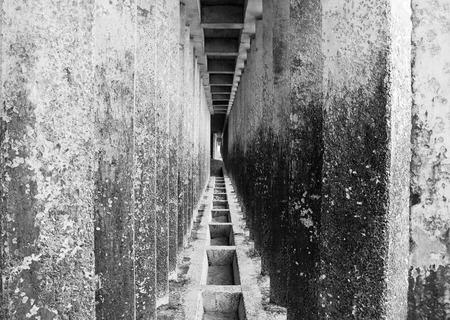 corridor of concrete pillars with perspective depth photo