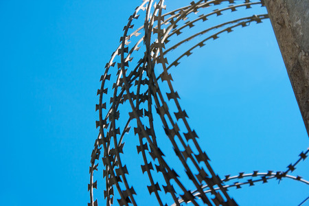 dangerous ideas: coil of barbed wire on a concrete fence with blue sky closeup