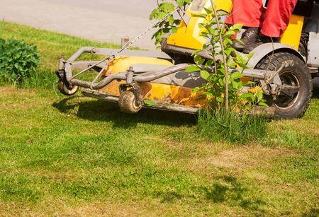 mows: man mows a lawn mower outside closeup