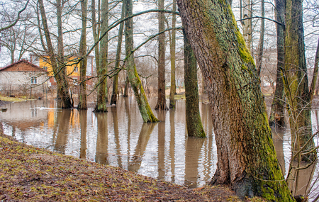 flood area: flooded creek in early spring in the city on gloomy day Stock Photo