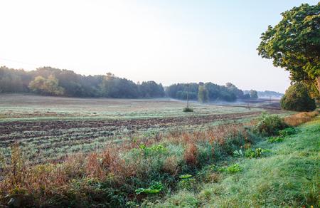 plowed field in the early foggy summer sunrise