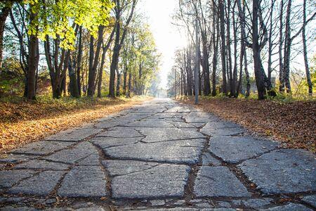 old broken concrete road on a sunny autumn day Reklamní fotografie