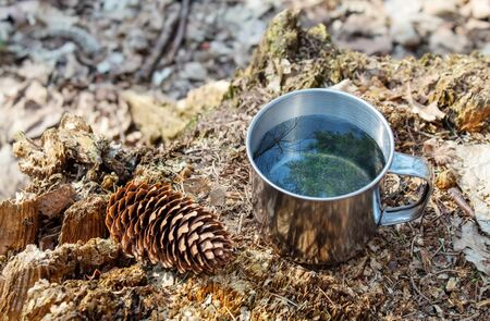 metal cup of water standing on a stump in the forest on sunny day. blue sky and the tree are reflected in the water