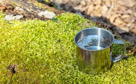 metal cup of water standing on a moss covered log in the forest on sunny day. blue sky and the tree are reflected in the water