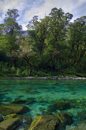 Clinton River with pristine clear water, Milford Track great walk