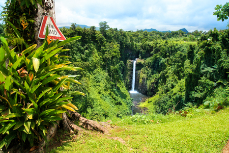 Exotic jungle forest lookout, wild vegetation and tropical tree with Give Way sign, view of Sopoaga  Waterfall on background, Samoa, Upolu Island Stock Photo
