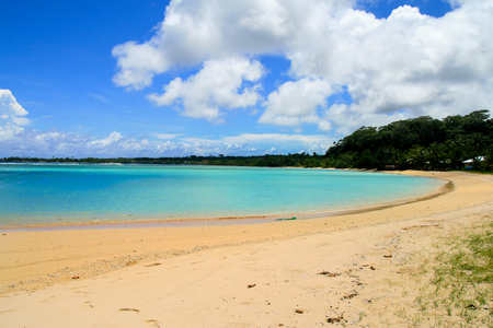 Sandy beach on turquoise water bay with coastal tropical trees, exotic holiday seascape view