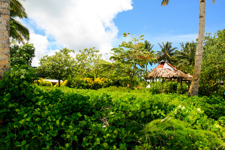 Tropical island jungle in Oceania with traditional primitive architecture of Polynesian aborigines, South Pacific Ocean
