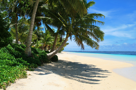 Tropical sandy beach holiday view with exotic coconut palm trees and Pacific Ocean turquoise water lagoon during hot sunny day in Polynesia Reklamní fotografie