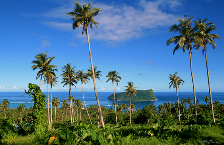 Panoramic view through the palm trees and native vegetation to the Pacific Ocean horizon with tropical island from island to island Stock Photo - 111393313
