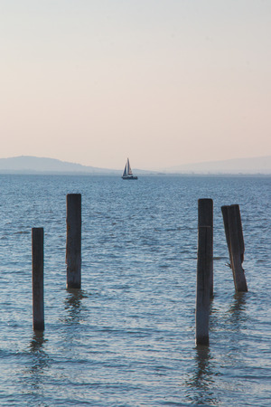 Wooden dock pillars vertically in light blue sea water and small holiday sailboat sailing in distance on horizon, idea of vacation activity on sea