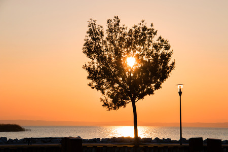 Silhouette of beautiful lone tree and lamp post on the coast against shinning sun on colourful sunset sky over the blue sea, lonely tree on beach in front of orange yellow sky natural background Stock Photo