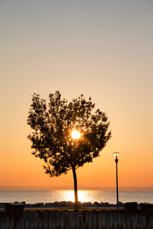 Lonely tree against sunset sky with golden sun above the sea low horizon, setting sun landscape of colourful heaven over the water with silhouette of tree and lamppost on walkway