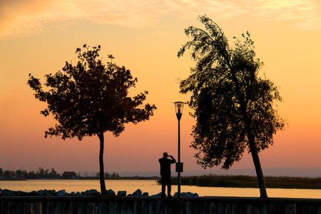 Sunset landscape with silhouettes of two trees, lamp post and man with smart phone while taking a picture of warm coloured twilight sky over the Neusiedl lake in Austria Stock Photo