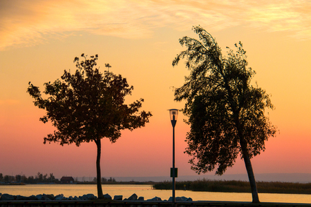 Peaceful evening coastal landscape coloured by setting sun with silhouettes of two trees, lamp post in the middle and colourful yellow orange and red sky above the water and nature